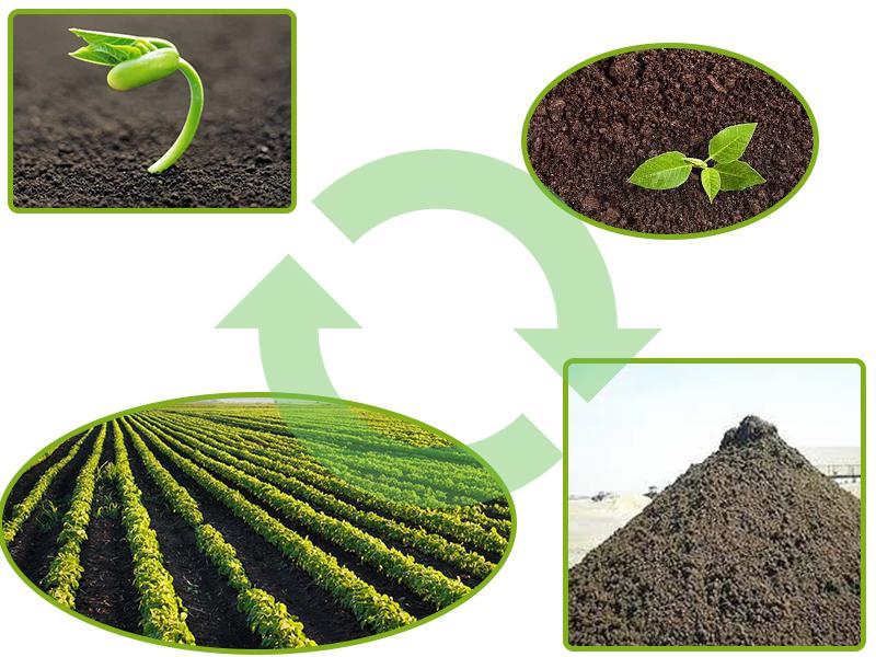 اهمیت کود دامی برای خاک