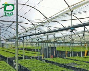استانداردهای لازم در گلخانه